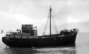 navio 1