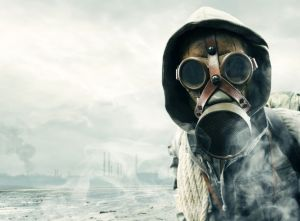 mask230115