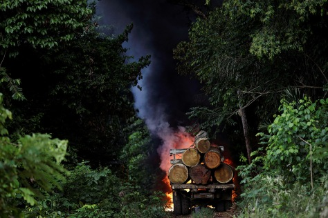 amazon-guardians-rainforest-deforestation