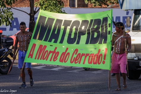 Matopiba-Mata_Helen-Lopes