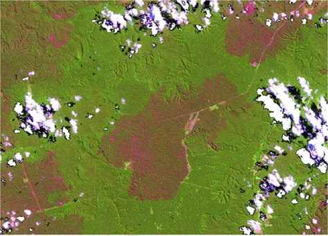 Image4_Landsat-8_burned-area