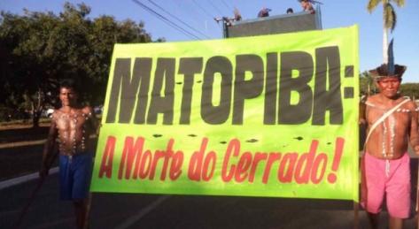 mapotiba
