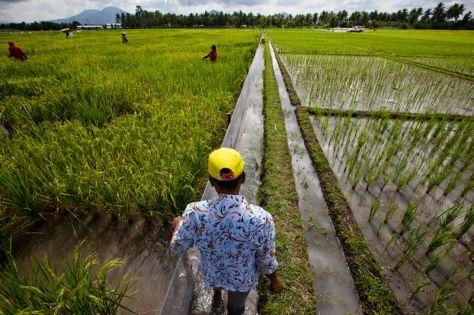 agricultor filipino