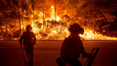 Firefighters battling the King Fire watch as a backfire burns along Highway 50 in Fresh Pond