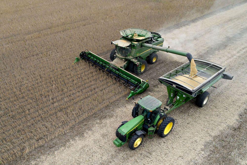 colheita soja