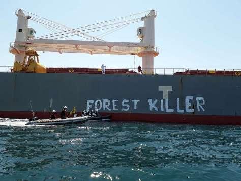 forest killer