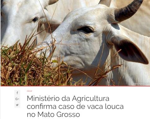vaca louca mt 1