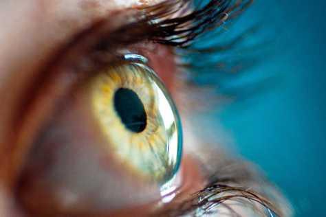 retino