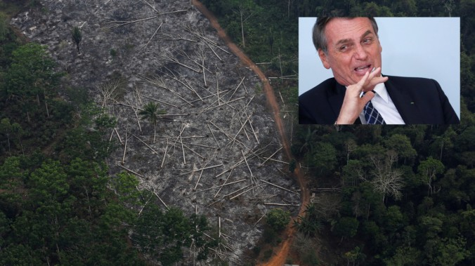 bolso deforest