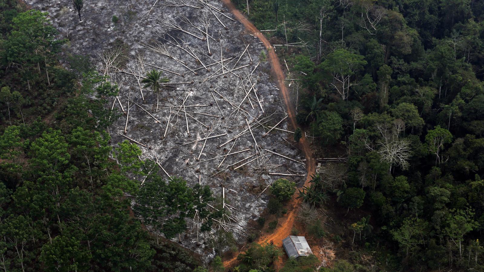 Brazil-satellite-deforestation-Amazon-Bolsonaro-Galvao