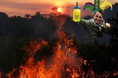 fogo-amazonia