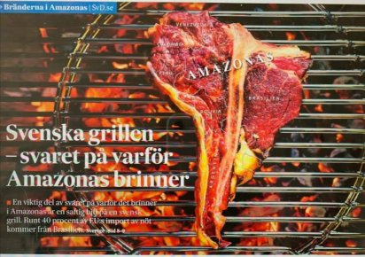 carne suecia