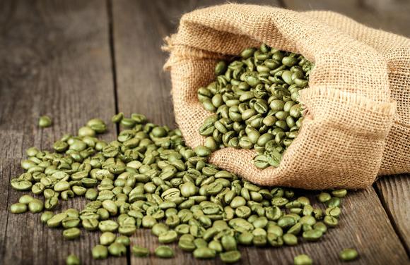 green-coffee-colheita