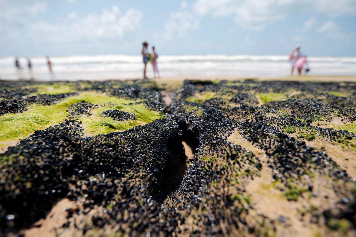 oleo praia