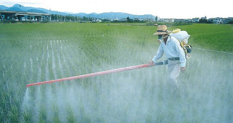 Agrotóxicos.-Fonte-Unisinus
