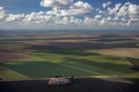 Soya Production in the Cerrado Region, Brazil Cerrado Brasileiro e Produção de Soja