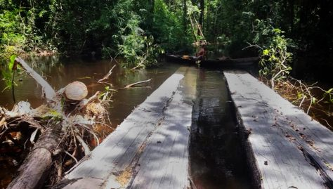 Ponte-na-Resex-do-Lago-do-Capanã-Grande-Foto-Divulgação-1-1024x583