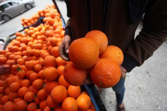 laranjas israel