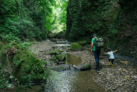 Father and child hiking together in a forest stream