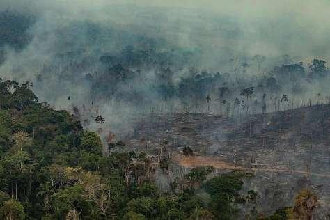 Amazon Burnt