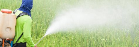pandemia pesticides
