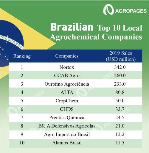 brazilian top