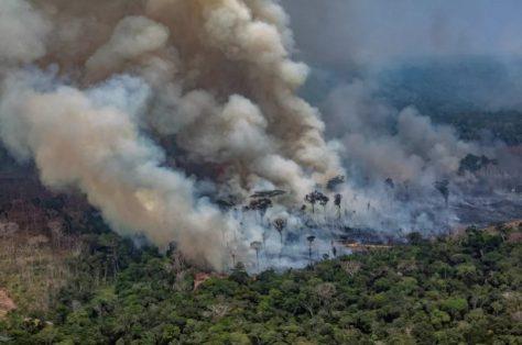 DETER-desmatamento-Amazônia-junho-2020-810x537