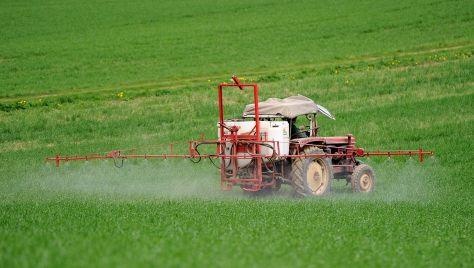 Bauern freuen sich über Wetter