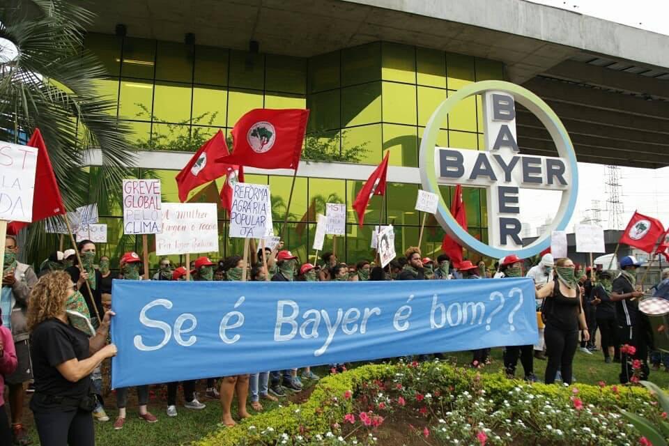 bayer-mst-02