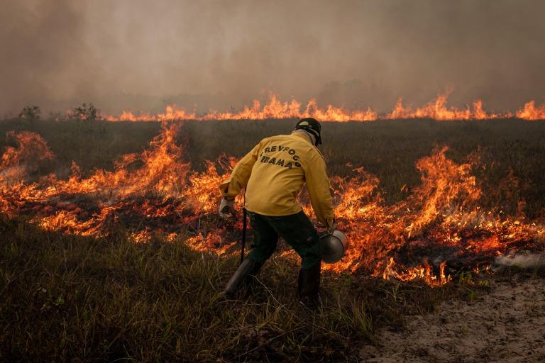 fogo brasil