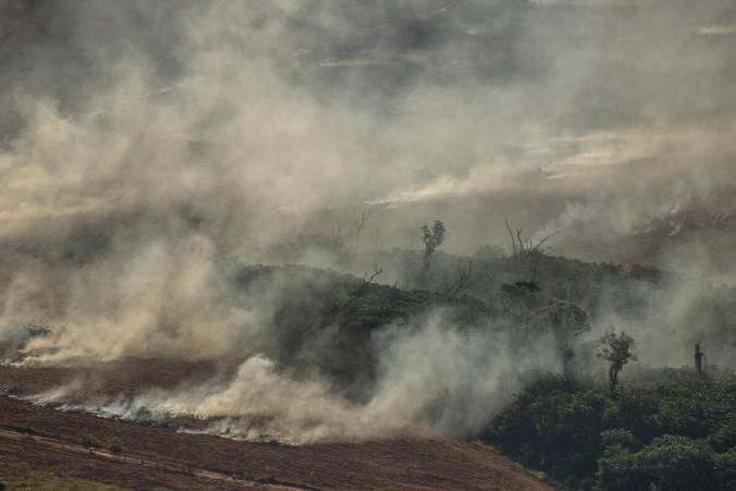 Deforestation and Fire Monitoring in the Amazon in July, 2020Monitoramento de Desmatamento e Queimadas na Amazônia em Julho de 2020