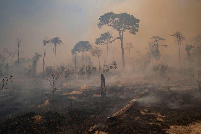 fogo amazonia