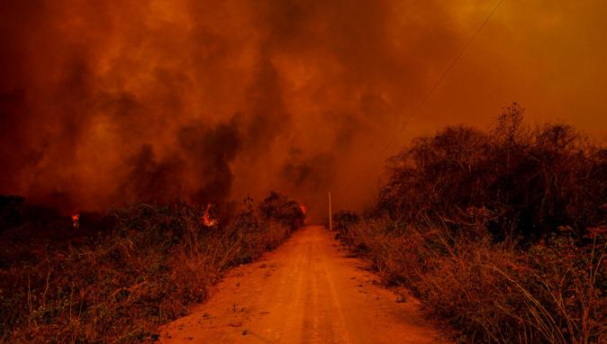 pantanal-queimada