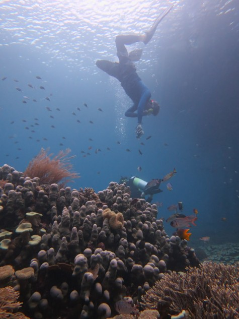 Mark snorkelling Raja Ampat