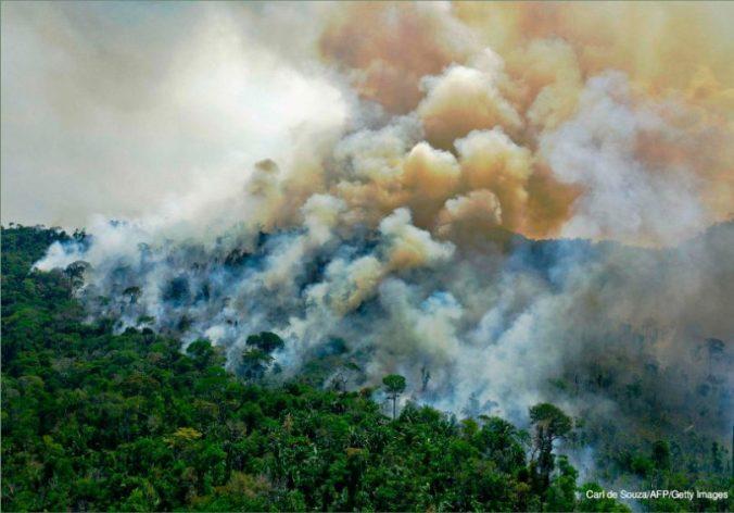 perda-florestas-tropicais-810x566