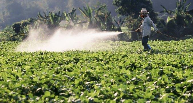 pesticides overuse