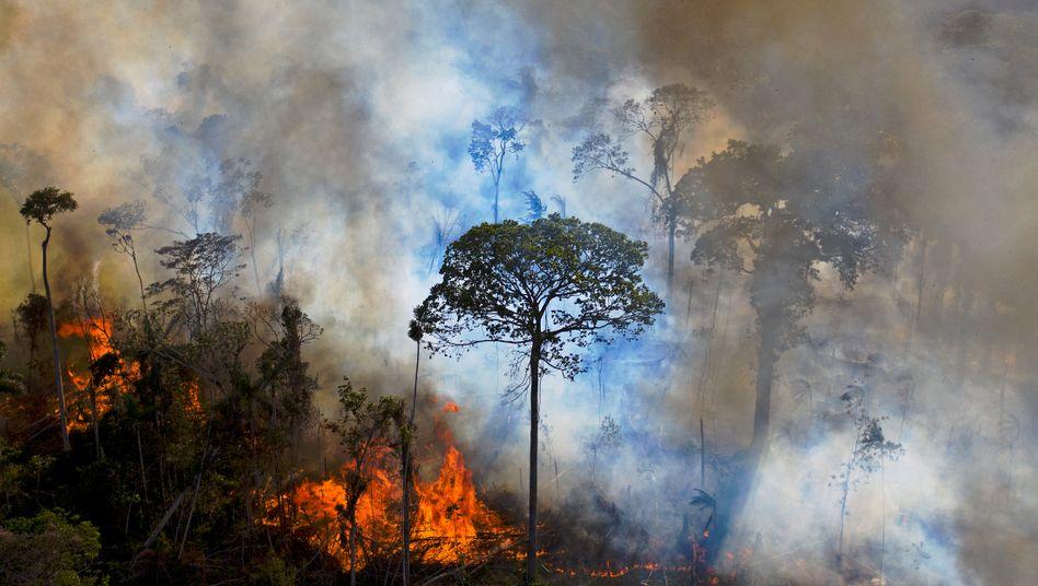 BRAZIL-ENVIRONMENT-FIRE