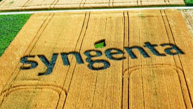 syngenta-640x360