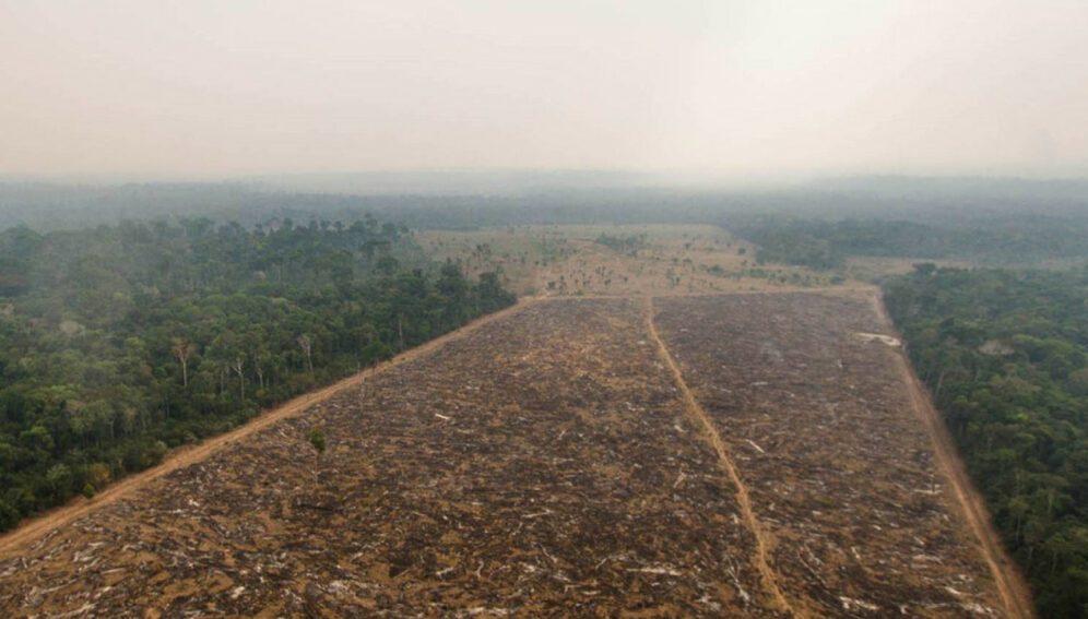 carbono-Amazonas-996x567