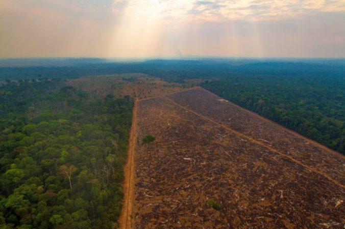 desmatamento-amazonia-1583883706-1000x666