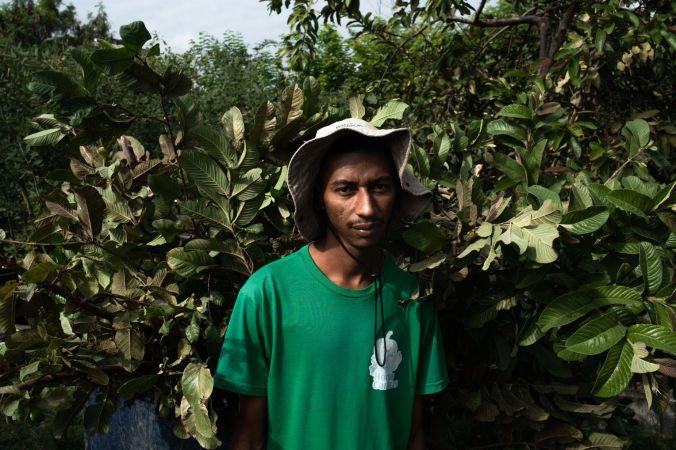 manguinhos 0