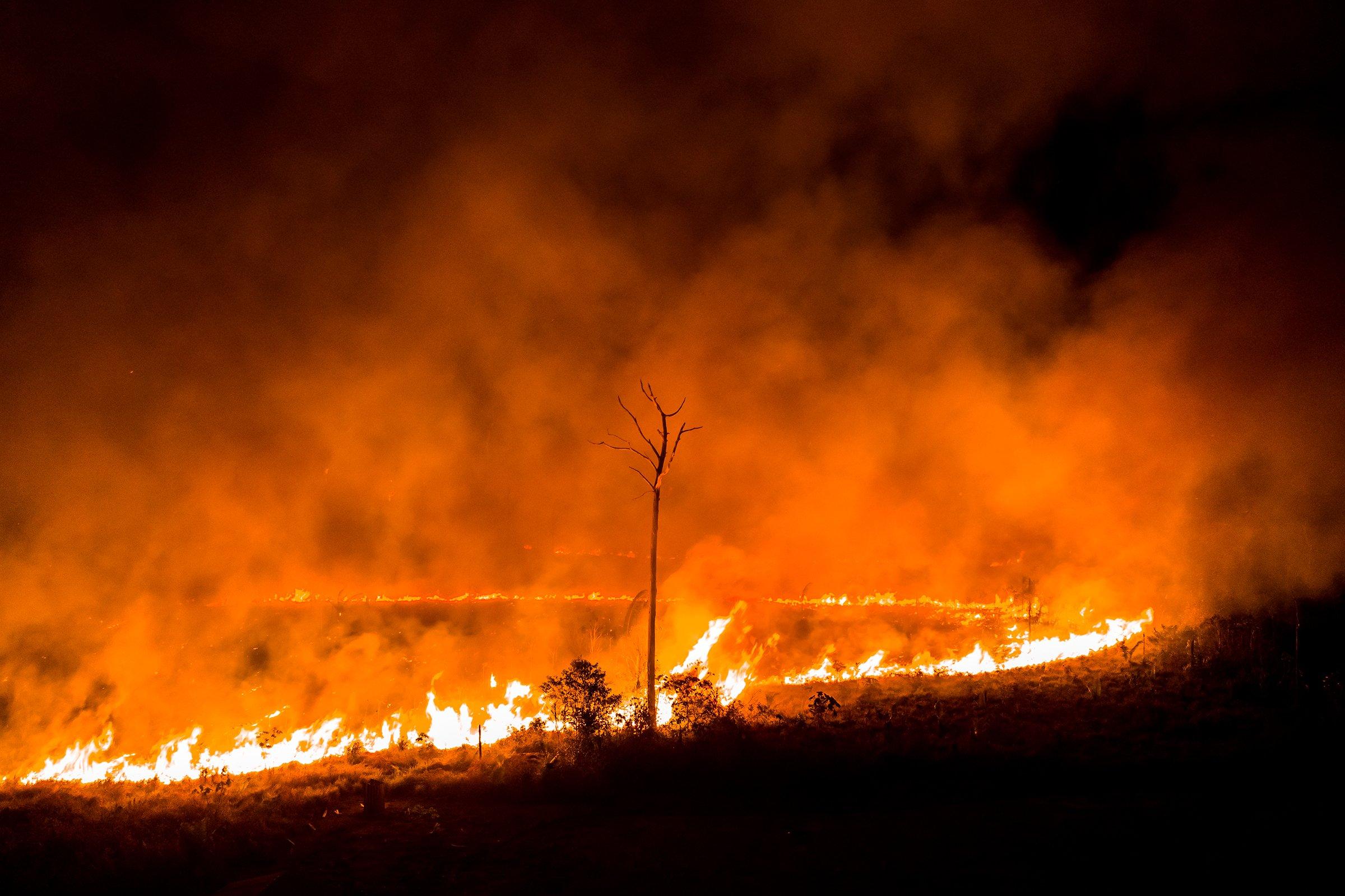 sebastian-liste-amazon-fires-brazil-1