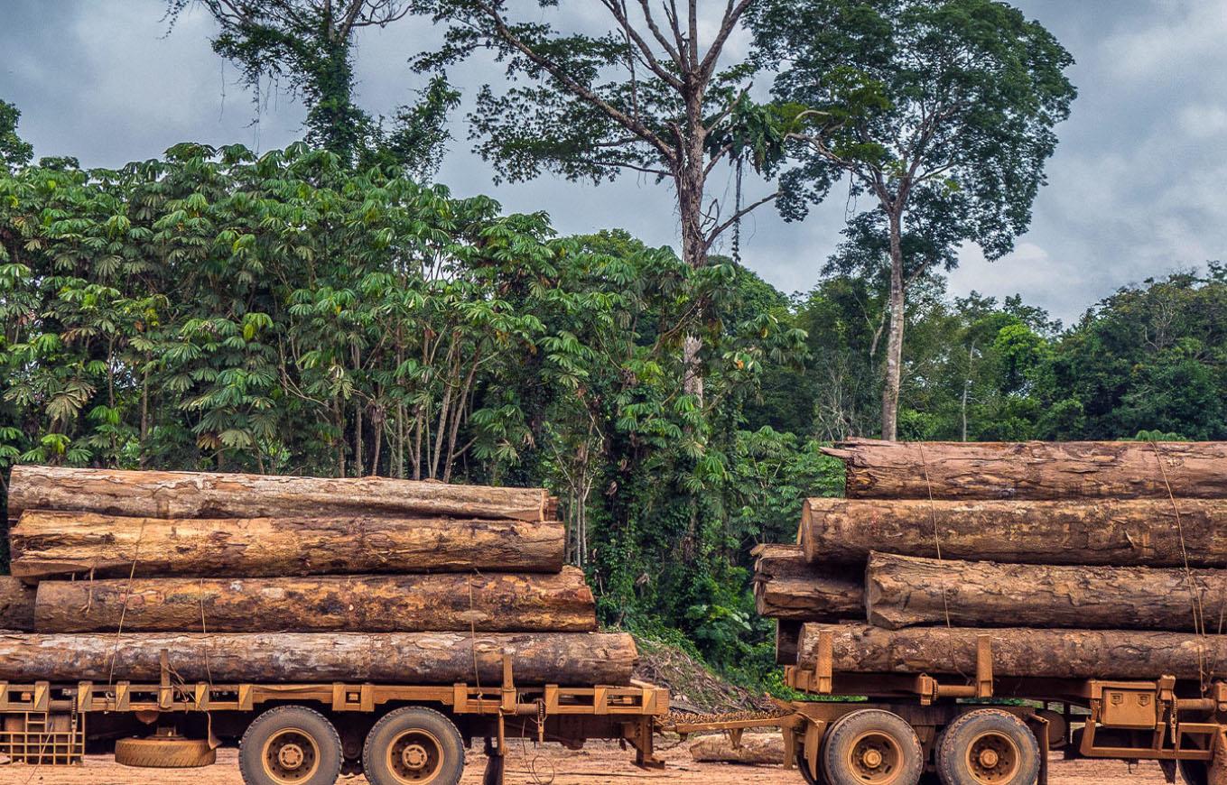 madeira ro