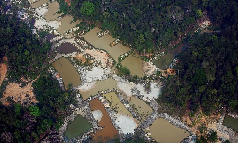 Sobrevoo no Pará (Foto Marizilda Cruppe/Amazônia Real/17/09/20